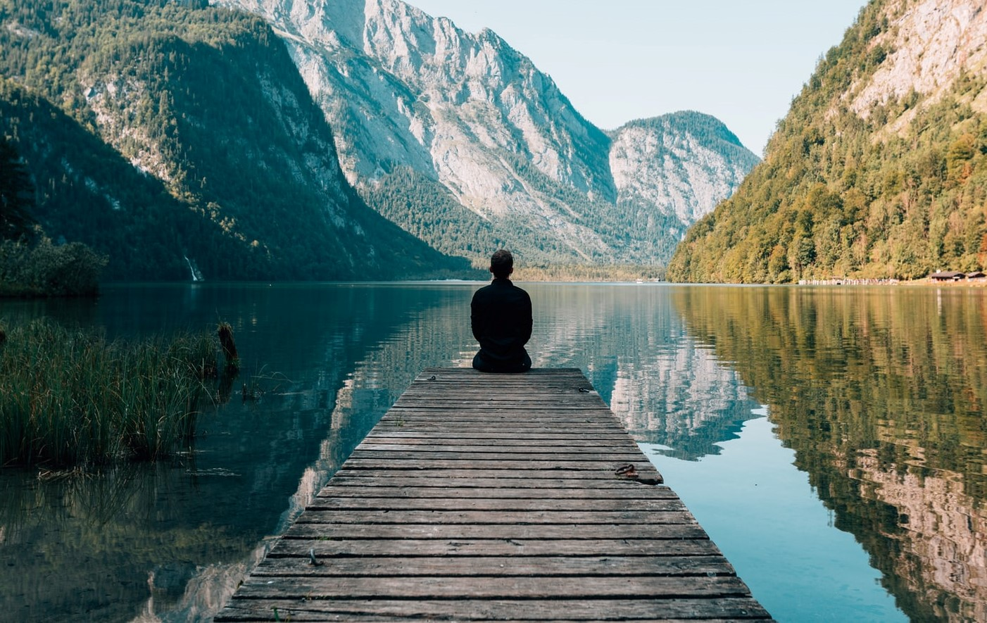 Coping During COVID-19: Some Mental Wellness Resources